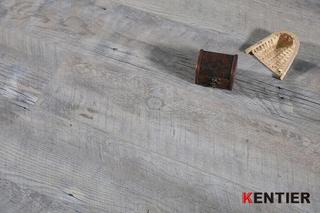 Modern Style Premium SPC Flooring